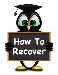 google-penguin-recover